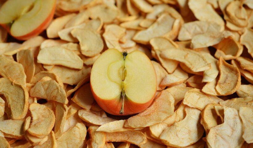 suszarka do owoców i warzyw